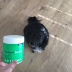 protexin soluble dog gut health