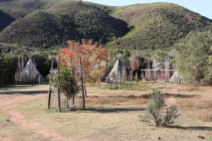tipi-village robertson pet friendly