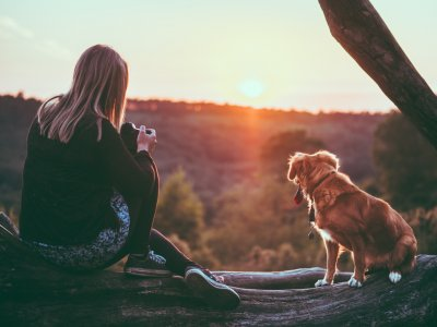romantic-pet-friendly-getaways