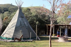 assegai-tipi-pet-friendly-camping