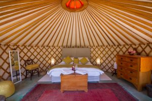 southern-yurts-pet-friendly-accommodation-western-cape
