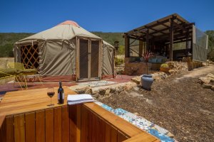 southern-yurts-pet-friendly-glamping-western-cape