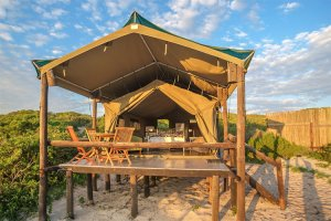 west-coast-pet-friendly-camping-western-cape