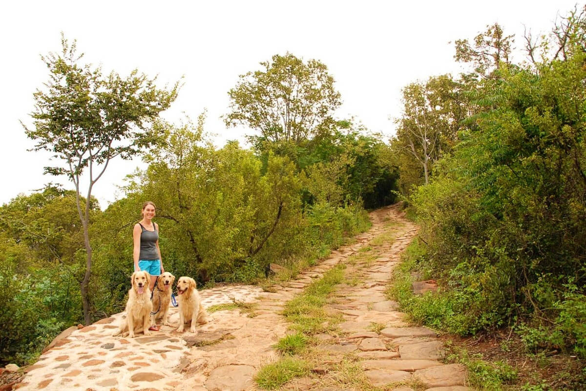 karee-and-olienhout-cottages-magaliesburg-walking-trail